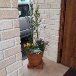 玄関のお花が新しくなりました!